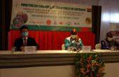 Valorisation du Faso Dan Fani: 1420 métiers à tisser pour les femmes tisseuses